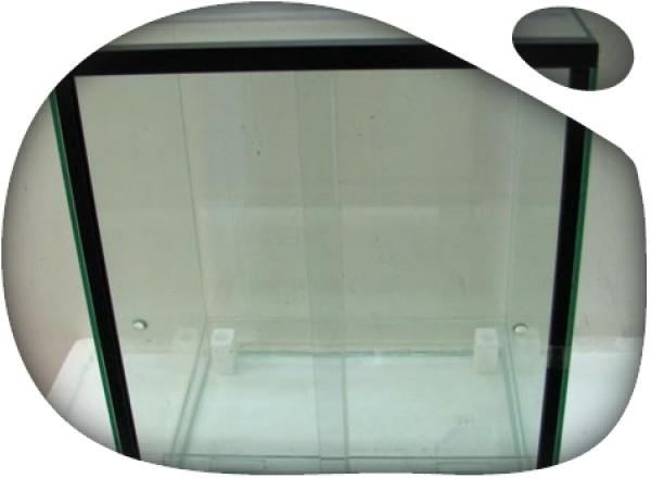 Terrario Dendrobates 30x30x50