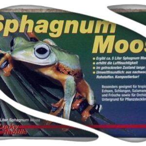Ladrillo de sphagnum (100gr) 5 litros