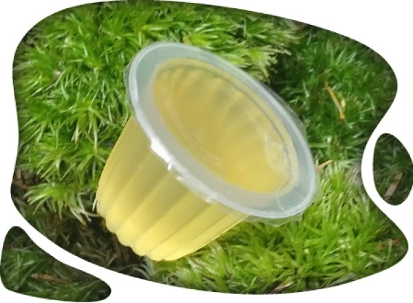 Gelatina de miel